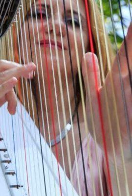 "<a href=""http://artistrelatedgroup.com/harpist-dubai/"" title=""harp player dubai"">Evelina Harpist</a>"